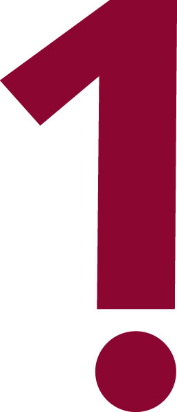 karina_bjerregaard_dj_logo