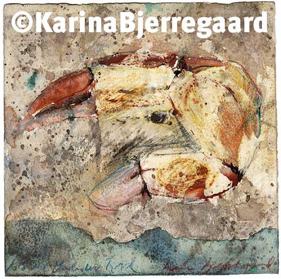 karina_bjerregaard_shellfish_claw