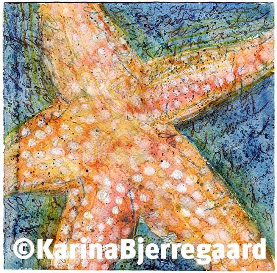 karina_bjerregaard_starfish